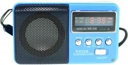 Радіо WSTER WS-239