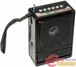 Радіо NNS NS-018U