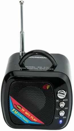 Акустика SM-270