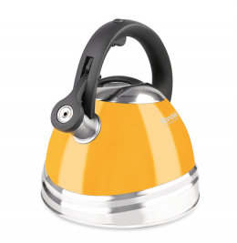 Чайник RONDELL Sole RDS-908 (3 л)