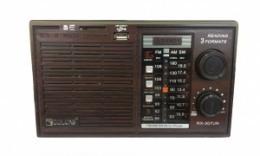 Радіо Golon RX-307UR