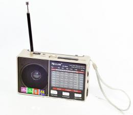 Радіо Golon RX-8866 Gold